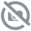 Courge butternut TIVANO F1
